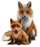Fox mom and cub. Watercolor painting Stock Photo