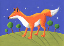 Fox in the night Royalty Free Stock Photos