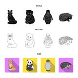 Fox, panda, hedgehog, penguin and other animals.Animals set collection icons in black,flat,outline style vector symbol. Stock illustration stock illustration