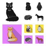 Fox, panda, hedgehog, penguin and other animals.Animals set collection icons in black, flat style vector symbol stock. Illustration vector illustration