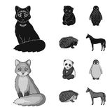 Fox, panda, hedgehog, penguin and other animals.Animals set collection icons in black,monochrome style vector symbol. Stock illustration vector illustration