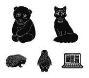Fox, panda, hedgehog, penguin and other animals.Animals set collection icons in black style vector symbol stock. Illustration stock illustration
