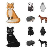 Fox, panda, hedgehog, penguin and other animals.Animals set collection icons in cartoon,black style vector symbol stock. Illustration vector illustration