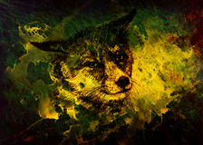 Fox portrait, pencil drawing on paper and magical color effect. Stock Image
