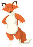 Fox with red fur standing. Illustration Royalty Free Stock Photo