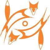 Fox's Eye vector illustration