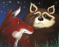 Fox and scared raccoon by night Stock Photography