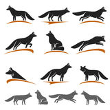Fox set. Vector Royalty Free Stock Photography