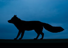 Fox Silhouette Royalty Free Stock Photo