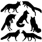 Fox silhouette. Set. Vector illustration isolated on white background. Fox silhouette. Set with seven different silhouettes. Vector illustration isolated on vector illustration
