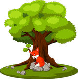 Fox sitting on the stone royalty free illustration