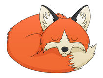 Fox Sleeping. An illustration depicting a sleeping cute red fox cartoon Royalty Free Stock Images