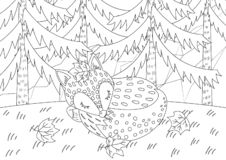 A Fox Sleeping in Jungle Colorless stock illustration