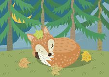 A Fox Sleeping in Jungle royalty free illustration