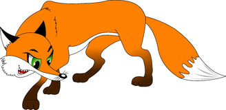 Fox. Sly red fox for a walk,  and illustration Royalty Free Stock Photo