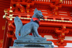 Fox statue in Kyoto. Fox statue near red shinto temple in Kyoto, Japan. Foxes are a common subject of Japanese folklore. Stories depict them as intelligent Stock Photo
