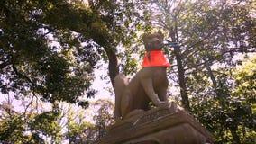 Fox Statues are often found in Fushimi Inari Taisha Shrine stock video