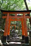 Fox temple japan torii gates Stock Photography