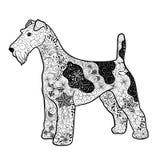 Fox terrier libre illustration