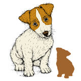 Fox terrier puppy sit realistic Royalty Free Stock Photos