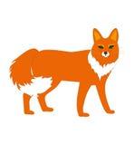 Fox, Tier, Stockfotos