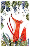 Fox tries to get grapes hand-painted watercolor children's illustration Stock Images