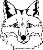 fox vector Stock Photo