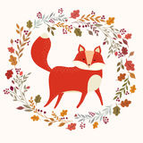 The fox Royalty Free Stock Image