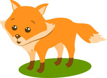 Fox, vector Illustration TOn The White Background Royalty Free Stock Photo