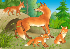 The fox and young foxes. About a hole Royalty Free Stock Images
