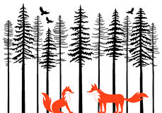 Foxes in forest, vector Royalty Free Stock Photography
