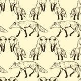 Foxes il modello senza cuciture Fotografia Stock Libera da Diritti