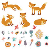 Foxes set . Cute vector characters Stock Photography