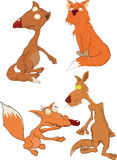 Foxes The Complete Set Royalty Free Stock Images