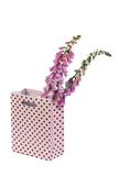 Foxglove flowers in a pink gift bag isolated on white Stock Photos