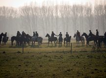 Foxhunting. Riders and horses on a field Stock Photo