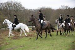 Foxhunting im neuen Forest England Großbritannien Lizenzfreie Stockfotografie