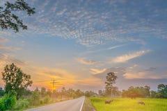 Foyer brouillé et mou de doux abstrait la silhouette le coucher du soleil W Image stock