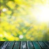 Foyer mou vert abstrait Bokeh, lumière du soleil et conseil en bois vide Photographie stock