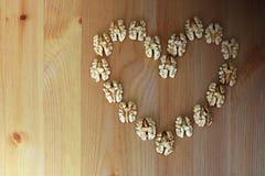 Foyer Nuts Photographie stock libre de droits