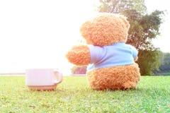 Foyer sélectif à l'ours de nounours se reposant sur l'herbe avec l'éclat su Image stock
