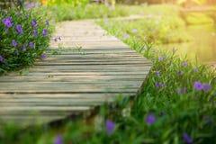 Foyer sélectif au pont en bois et à la fleur pourpre de fleur latérale photographie stock libre de droits