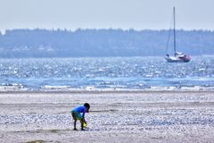 Foyer sélectif sur le garçon jouant à la plage avec l'espace de copie image libre de droits