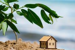foyer sélectif sur peu de maison image libre de droits