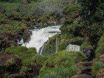 Foz doet Dalingen Iguacu Stock Foto