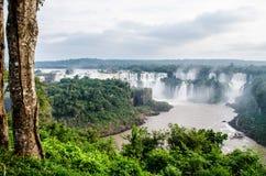 Foz doet iguaçu, Paranà ¡, Brazilië - 30/06/2017: de mening van Iguazu valt op de weg van de sleep met de boomstam van een boom royalty-vrije stock foto