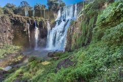 Foz faz Iguassu Argentina Brasil Fotos de Stock Royalty Free