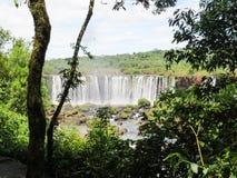 Foz font Iguaçu, Brésil, vue partielle des automnes d'Iguaçu, au milieu d'une forêt fermée photos stock
