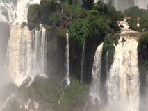 Foz Iguaçu siklawy i latający ptaki w Ameryka Południowa, zbiory wideo