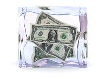 fozen pieniądze Obrazy Stock